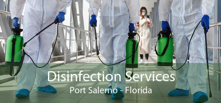 Disinfection Services Port Salerno - Florida