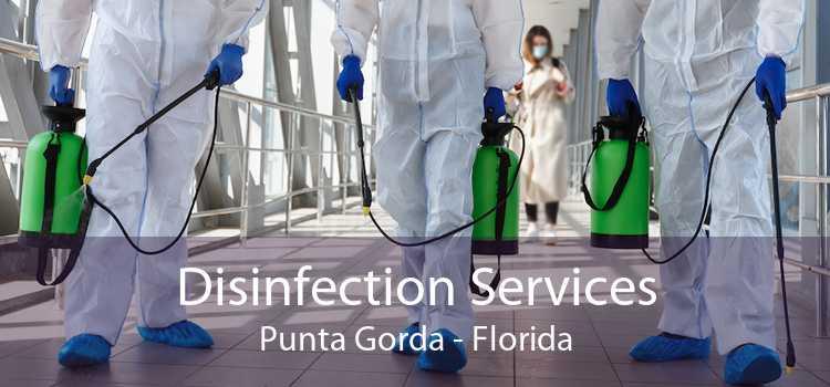 Disinfection Services Punta Gorda - Florida