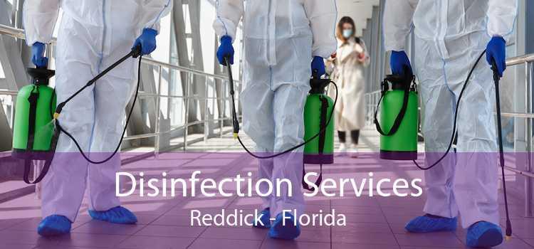 Disinfection Services Reddick - Florida
