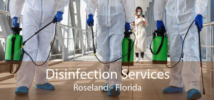Disinfection Services Roseland - Florida