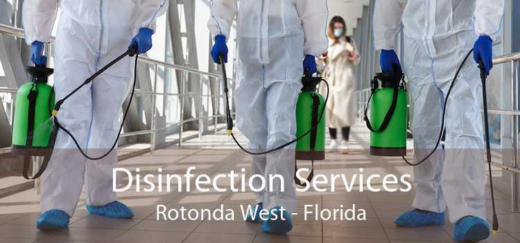 Disinfection Services Rotonda West - Florida