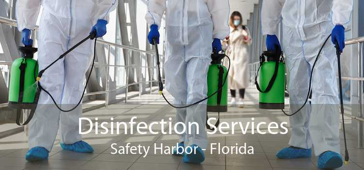Disinfection Services Safety Harbor - Florida