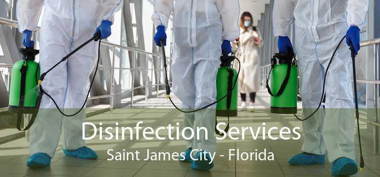 Disinfection Services Saint James City - Florida