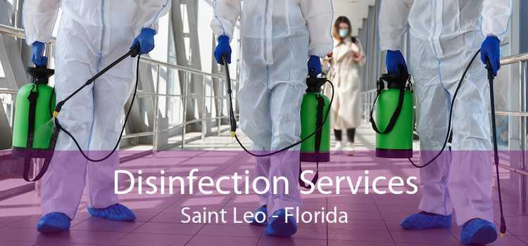 Disinfection Services Saint Leo - Florida