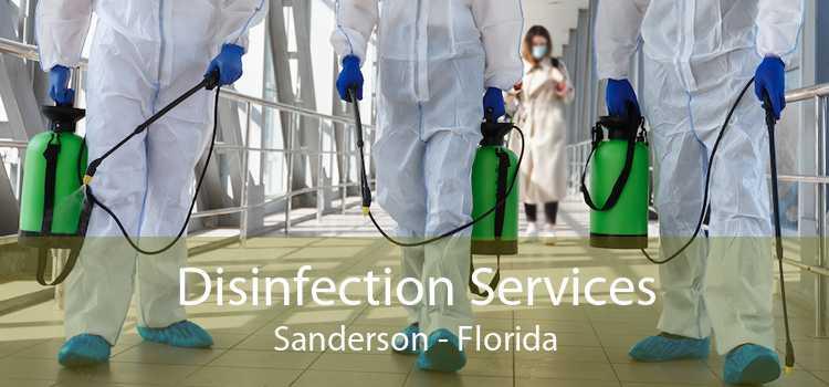 Disinfection Services Sanderson - Florida