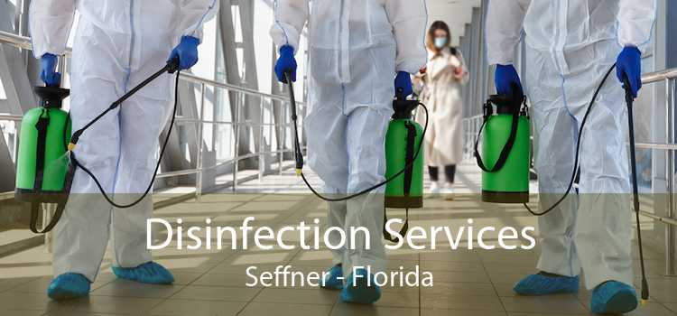 Disinfection Services Seffner - Florida