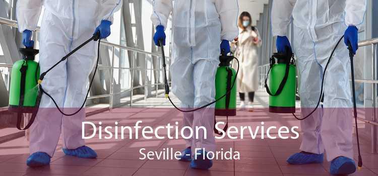 Disinfection Services Seville - Florida