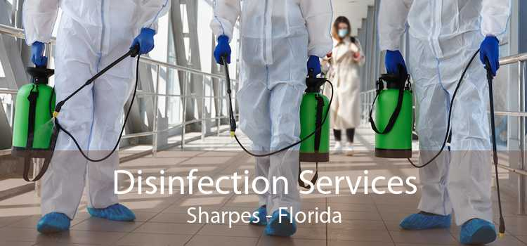 Disinfection Services Sharpes - Florida