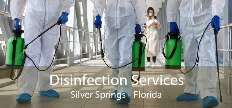 Disinfection Services Silver Springs - Florida