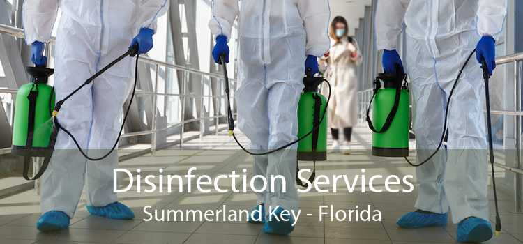 Disinfection Services Summerland Key - Florida