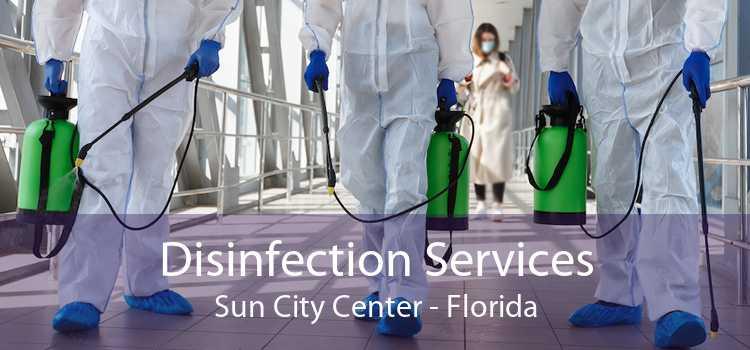 Disinfection Services Sun City Center - Florida
