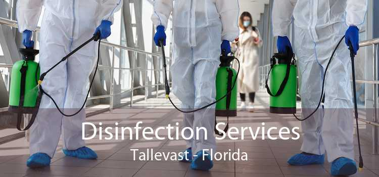 Disinfection Services Tallevast - Florida