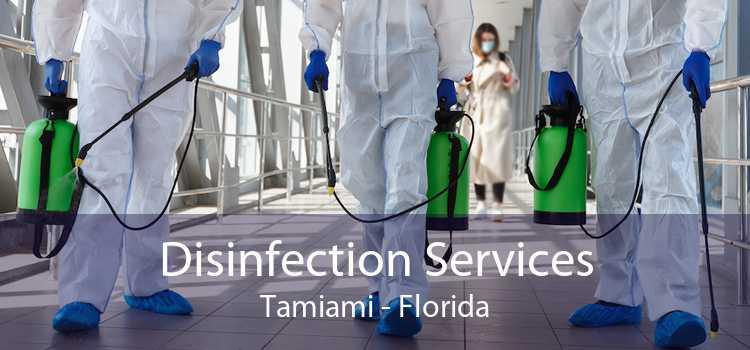 Disinfection Services Tamiami - Florida