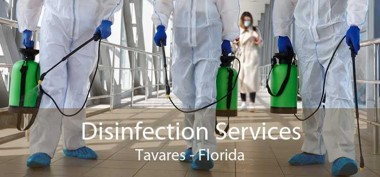 Disinfection Services Tavares - Florida