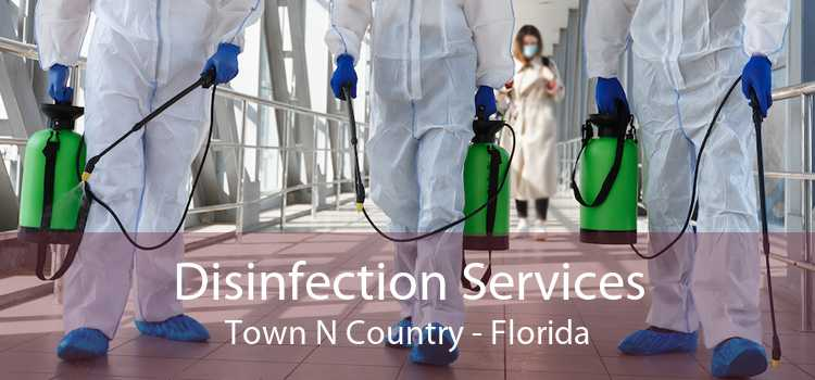 Disinfection Services Town N Country - Florida