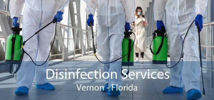 Disinfection Services Vernon - Florida
