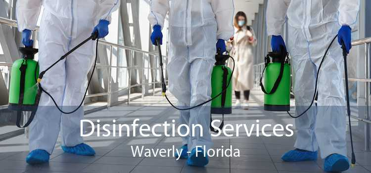 Disinfection Services Waverly - Florida