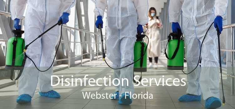 Disinfection Services Webster - Florida