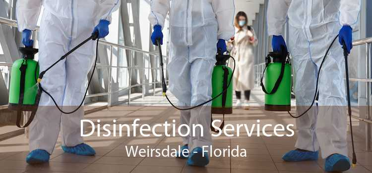 Disinfection Services Weirsdale - Florida