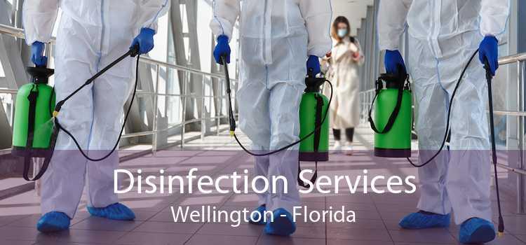 Disinfection Services Wellington - Florida