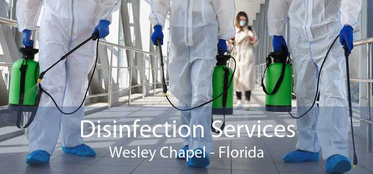 Disinfection Services Wesley Chapel - Florida