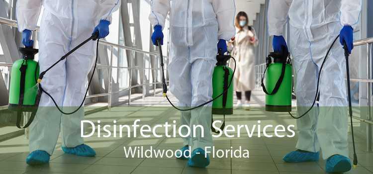 Disinfection Services Wildwood - Florida