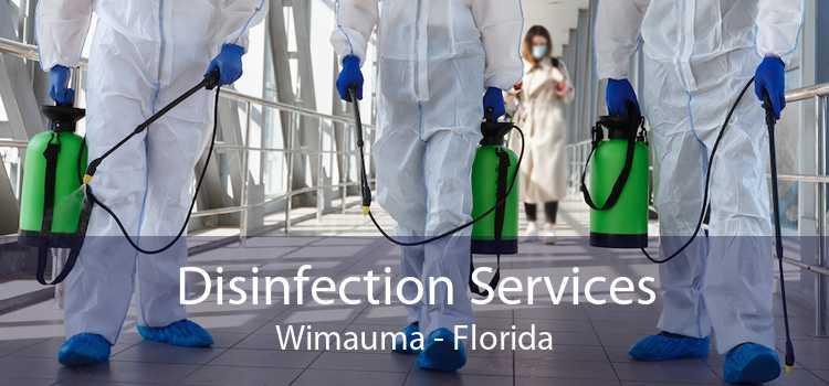 Disinfection Services Wimauma - Florida
