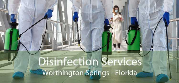 Disinfection Services Worthington Springs - Florida