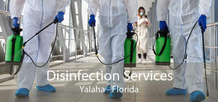 Disinfection Services Yalaha - Florida