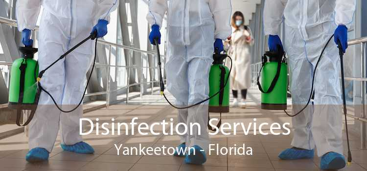Disinfection Services Yankeetown - Florida