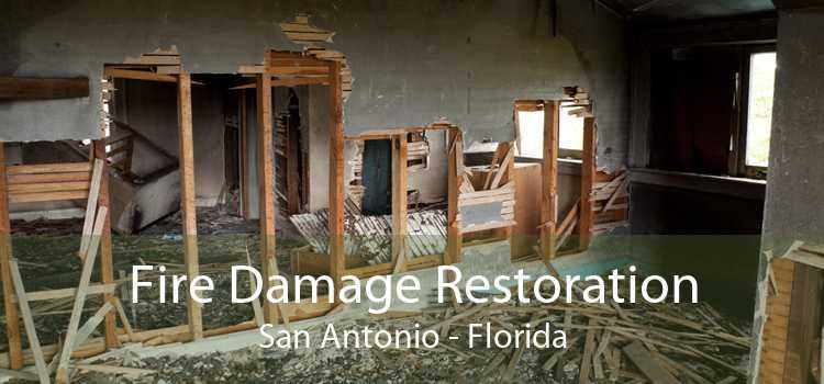Fire Damage Restoration San Antonio - Florida