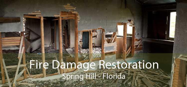 Fire Damage Restoration Spring Hill - Florida