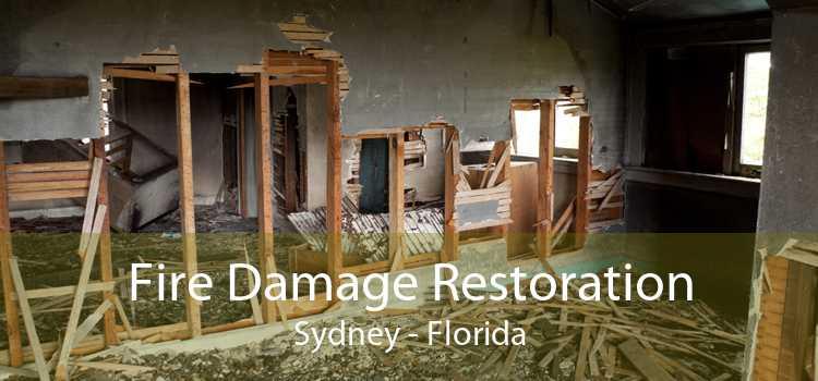Fire Damage Restoration Sydney - Florida