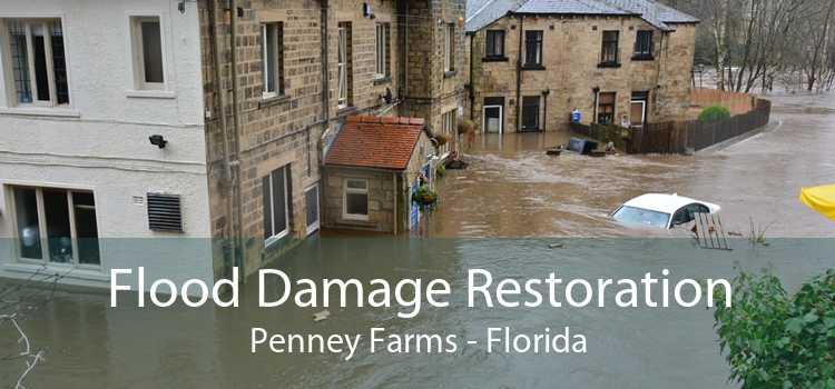 Flood Damage Restoration Penney Farms - Florida