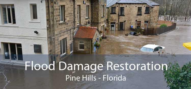 Flood Damage Restoration Pine Hills - Florida
