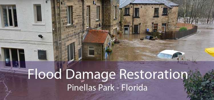 Flood Damage Restoration Pinellas Park - Florida