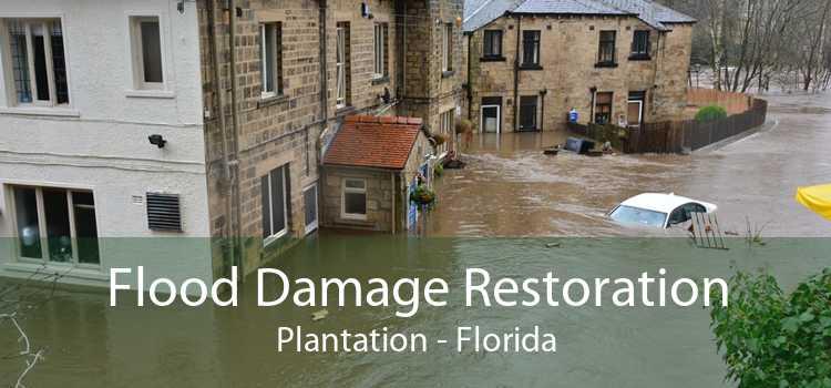 Flood Damage Restoration Plantation - Florida