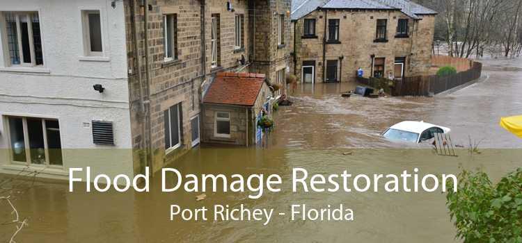 Flood Damage Restoration Port Richey - Florida