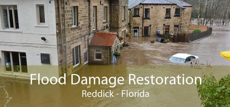 Flood Damage Restoration Reddick - Florida