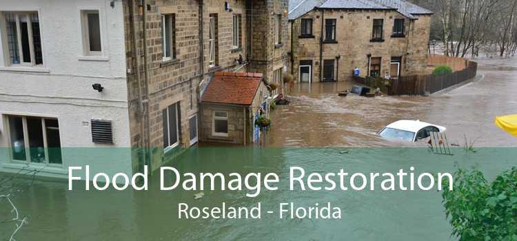Flood Damage Restoration Roseland - Florida