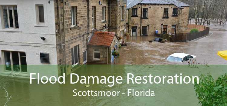 Flood Damage Restoration Scottsmoor - Florida