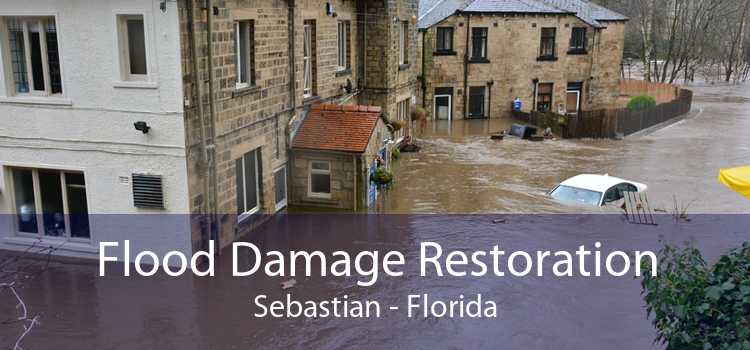 Flood Damage Restoration Sebastian - Florida
