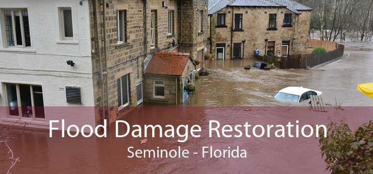 Flood Damage Restoration Seminole - Florida
