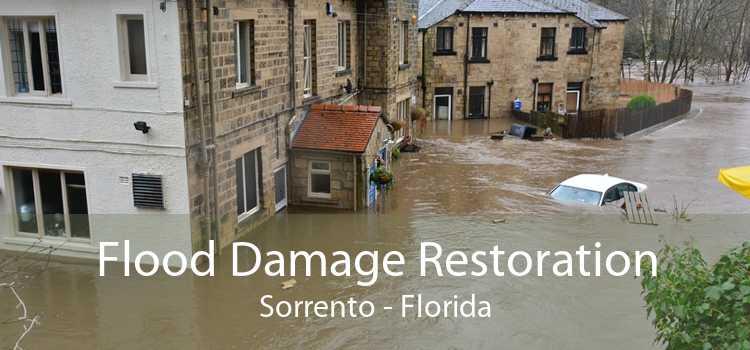 Flood Damage Restoration Sorrento - Florida