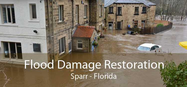 Flood Damage Restoration Sparr - Florida