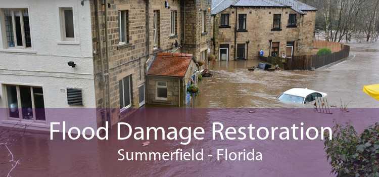 Flood Damage Restoration Summerfield - Florida