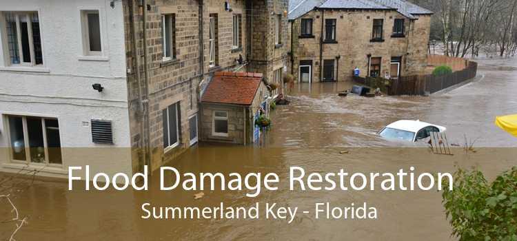 Flood Damage Restoration Summerland Key - Florida