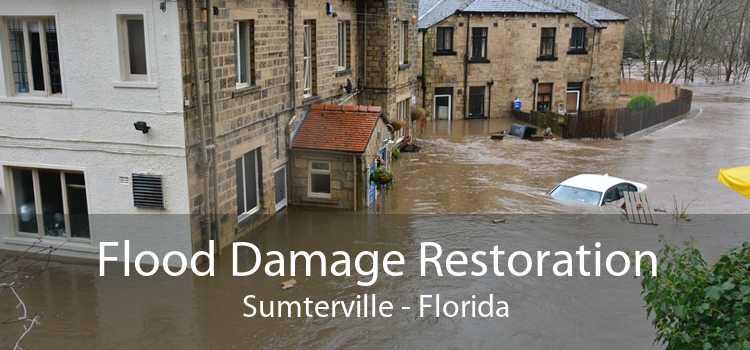 Flood Damage Restoration Sumterville - Florida