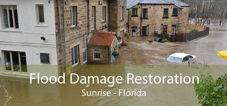 Flood Damage Restoration Sunrise - Florida