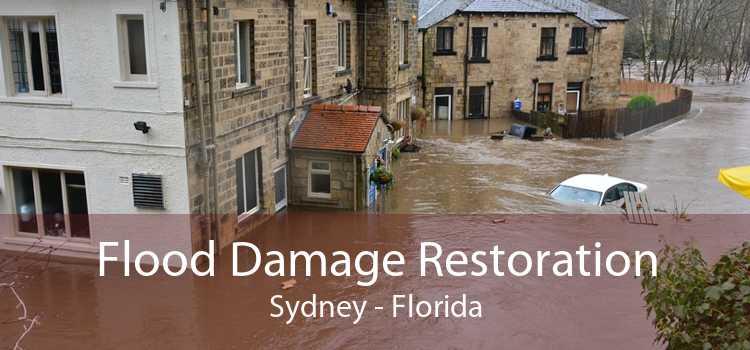 Flood Damage Restoration Sydney - Florida